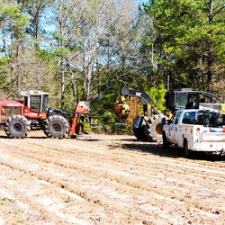 Site Preparation: Sheer and Raking Land Clearing
